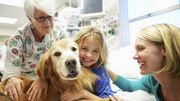 Doc Geo : Les cancers pédiatriques