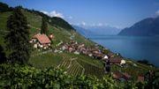 La Suisse, son chocolat, ses fromages... Et bientôt ses vins?