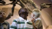 Visitez 5 musées Bruxellois avec vos enfants