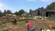 La coopérative du Grand Enclos à Grandvoir dans la commune de Neufchâteau: l'histoire d'une petite ferme familiale au cœur de l'Ardenne.