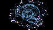"""Neuromarketing: notre cerveau est-il doté d'un """"bouton d'achat""""?"""