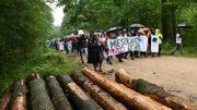 Manifestation pour la protection de la forêt mi-août 2017