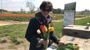 Maria Bommers et sa famille ont déjà planté 14 champs de fleurs à couper