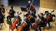 Le violoncelle pour la première fois discipline du Concours Reine Elisabeth en 2017