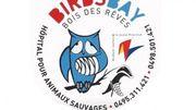 """Le """"Birds Bay"""" un refuge pour animaux sauvages au coeur du Bois des Rêves à Ottignies"""