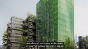 Dépolluer les villes grâce aux micro-algues