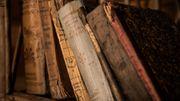 """La bibliothèque de Daraya en Syrie: """"Le livre est une forme d'instruction massive"""""""