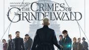 """Les critiques d'Hugues Dayez avec """"Les crimes de Grindelwald"""", la jeunesse d'Albus Dumbledore"""