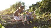 Jardiner pourrait améliorer votre bien-être autant que le vélo, la marche ou une sortie au restaurant