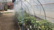 Frasnes-Lez-Anvaing : un nouveau centre de compétence du Forem pour le secteur Vert. Place à l'agriculture 2.0