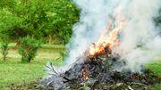 Ne brûlez plus vos déchets de jardin !