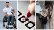Cap 48, les élections et le bien-être animal dans la Semaine VIVA
