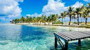 """""""Half Moon Caye"""", une île paradisiaque, au cœur du récif bélizien, classé patrimoine mondial par l'Unesco."""