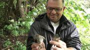 Vincent Bulteau adore les oiseaux. Il tient dans ses mains deux fauvettes à tête noire. Celle avec la tête noire est le mâle, et celle avec la tête brune est la femelle
