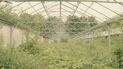 Les terres d'ici : ou l'histoire mouvementée d'un projet écologique