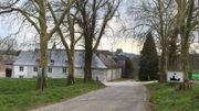 Une allée de platanes menant à une ferme-château, une des caractéristiques du village