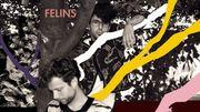 """""""FELINS"""" : de la dream pop belge qui fait ronronner"""