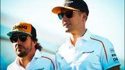 Vandoorne largué par Alonso? Les chiffres prouvent le contraire