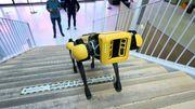 Un robot-chien pour remplacer l'homme dans les endroits dangereux