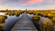 Excursions en Belgique: les plus beaux panoramas à voir en promenade
