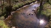 Saint-Hubert : l'eau est à nouveau contaminée par un parasite