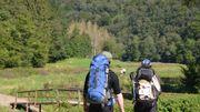 Train & sac à dos : randonner de gare en gare de la Grande Forêt de St-Hubert à la Gaume en passant par l'Ardenne méridionale