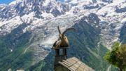 Ce samedi 1er août, la Grande Evasion vous emmène à la montagne en Savoie Mont Blanc