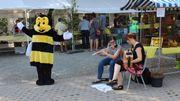 L'abeille à l'honneur ce dimanche 25août à Saint-Pierre