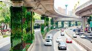 A Mexico, des citoyens recouvrent les viaducs avec des plantes