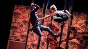 Anna Nilsson, le cirque en ébullition