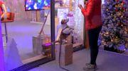 Un chien invité surprise devant le cube de Viva for Life: Haiko vient aboyer pour les animateurs!