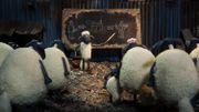 """""""Shaun le mouton"""", nouvelle perle burlesque des créateurs de Wallace et Gromit"""