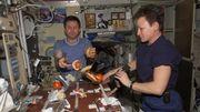Inventez la nourriture des astronautes de la NASA et gagnez 500.000 euros