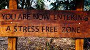 """""""Vous entrez maintenant dans une zone sans stress"""", tous les commerces de la ville jouent la carte """"bien-être""""."""