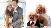 """Mariage: les amoureux se diront """" oui """" mais célébreront leur union en2022"""