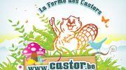 Evénement à la ferme des castors d'Aiseau-Presles