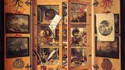 Cabinet de Curiosités peint par Domenico Remps dans les années 1690
