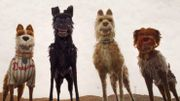 """Wes Anderson dévoile les premières images de """"Isle of Dogs"""""""