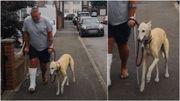 Voilà un chien qui a vraiment beaucoup d'empathie pour son maître