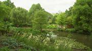 La visite de l'arboretum demande 1 journée