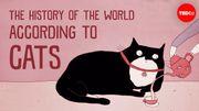 """""""L'histoire du monde selon les chats"""""""