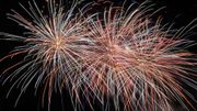 """""""Moins de feux d'artifices pour le Nouvel An"""""""