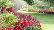 Bricolage et jardinage de retour, espoir pour les recyparcs de Tibi