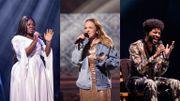 The Voice Belgique: quand de célèbres artistes valident les prestations des candidats!