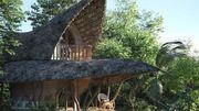 Tout plaquer pour une maison bambou en forme de lotus au Sri Lanka