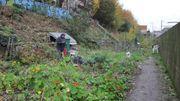 La fête des Jardins Participatifs revient ce dimanche à Etterbeek