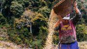 Sangay Om travaille 12 heures chaque jour dans ses champs, cette terre qui nourrit entièrement sa famille.