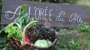 Connaissez-vous l'auto-recolte de légumes ?