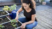 Six conseils pour jardiner en ville