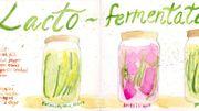 La lacto-fermentation c'est si simple! Démonstration avec du chou chinois
